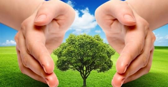 Ochrona środowiska