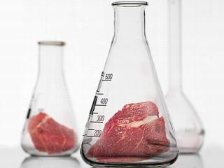 Czy sztuczne mięso zastąpi prawdziwe?